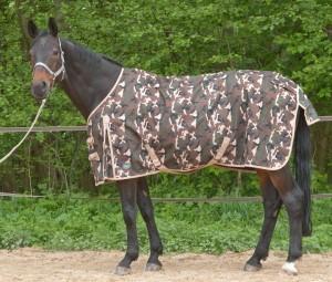 Pferdedecken Größe und Passformauswahl