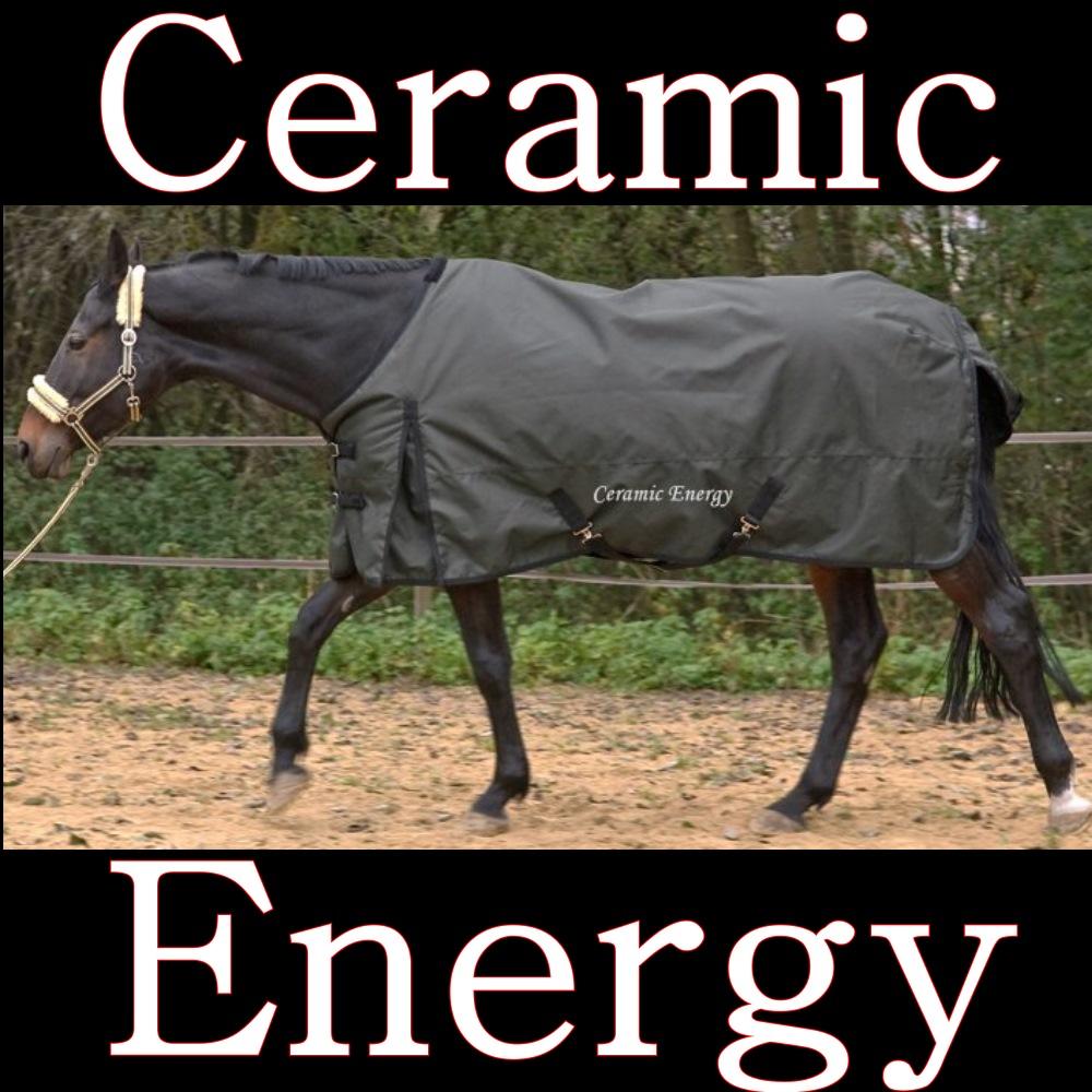 Pferdedecke für Pferd mit Rückenproblemen