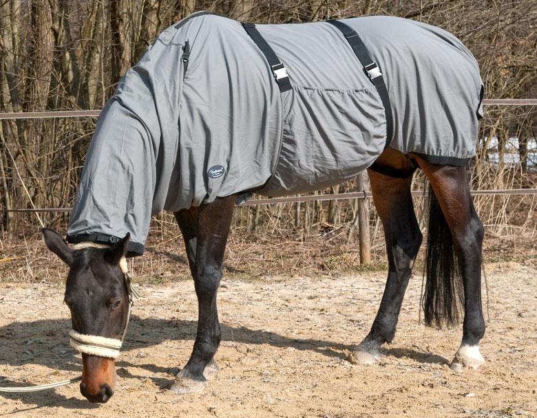 Die Ekzemerdecke für Pferde mit Sommerekzem