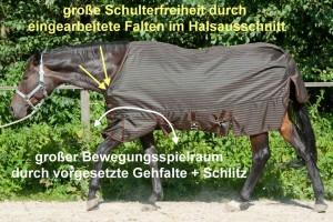 Pferdedecken Passformberatung für 2 Pferde mit tief angesetztem Hals