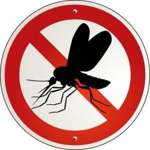 Fliegen stop