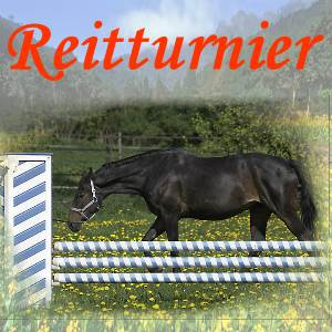 Großes Schwabacher Dressur- und Springturnier vom 28. – 29.06.2014
