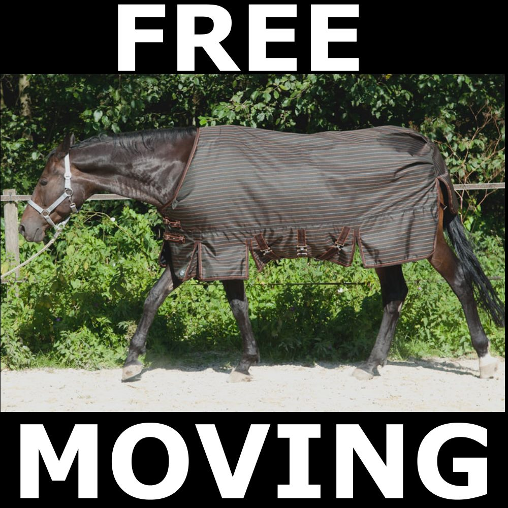 fedimax ® Free moving