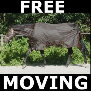 freemoving50_gal