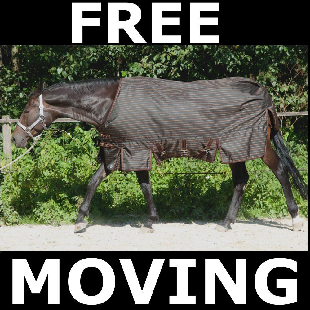 Pferd mit Nierenproblemen sucht Pferdedecke für Offenstall