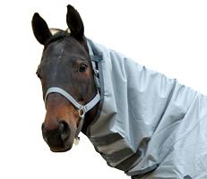 Pferdedecke 145 cm für Hannoveraner