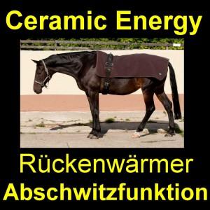 Rückenschmerzen beim Pferd
